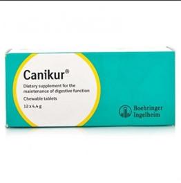 Canikur Anti Durchfallerkrankungen Tabletten für Hunde (Menge: Eine Box von 12 x 4,4 g Tabletten), einen Artikel - 1