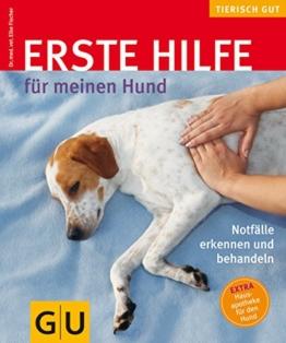 Erste Hilfe für meinen Hund (GU Tierisch gut) - 1