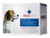 RECOACTIV® Gelenk Tonicum für Hunde, Gelenk Diät Nahrungsergänzungsmittel für Hunde, 3 x 90 ml, Ergänzungsmittel zur Rekonvaleszenz bei stark beanspruchten Gelenken oder zur Vorbeugung - 1