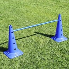 Superhund24 Kombi-Kegelhürde 50 in 4 Farben, mit Stange 100 cm, für Agility-Training (blau) - 1