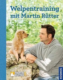 Welpentraining mit Martin Rütter - 1
